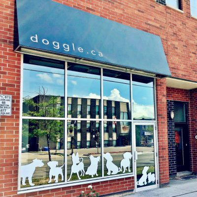 Doggle Daycare & Grooming