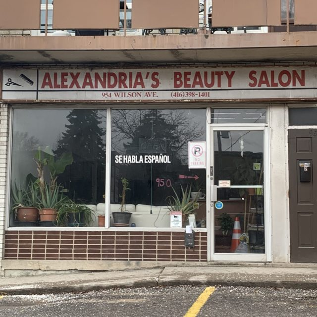 Alexandria's Beauty Salon
